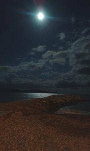 jetty in moonlight