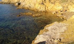 blue waters