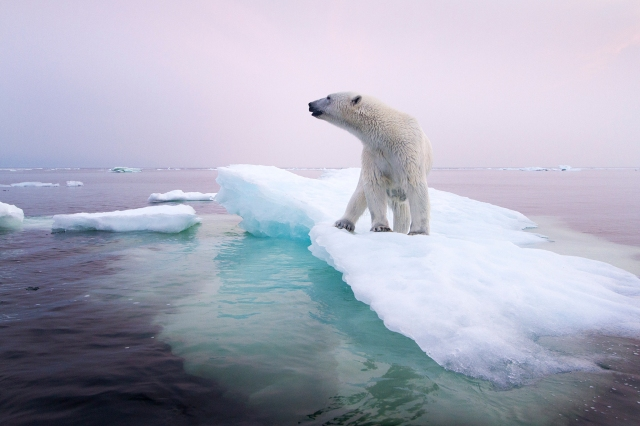 PHOTOGRAPH BY PAUL SOUDERS, CORBIS